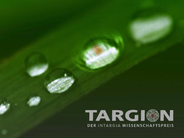Targion
